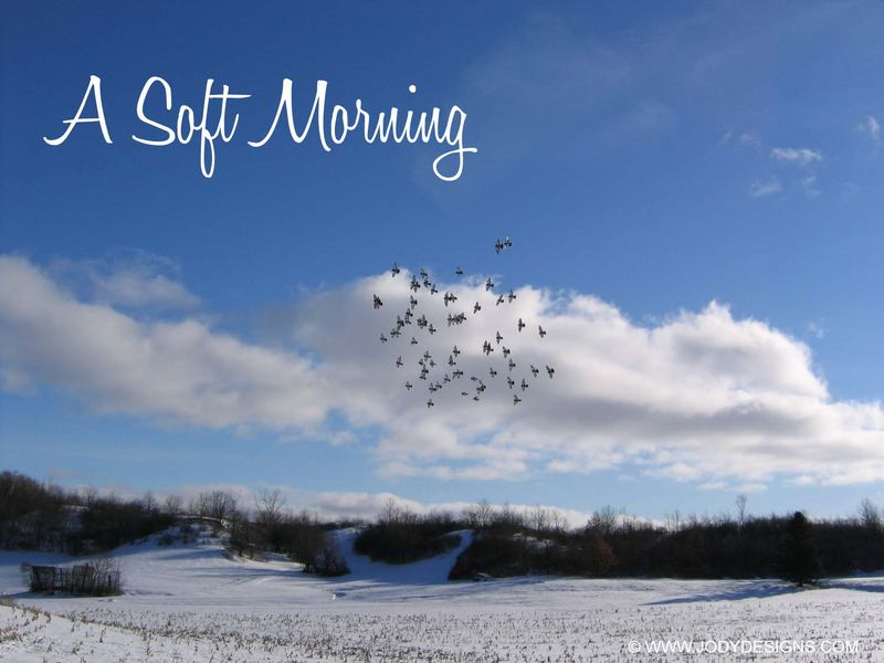 A soft Morning
