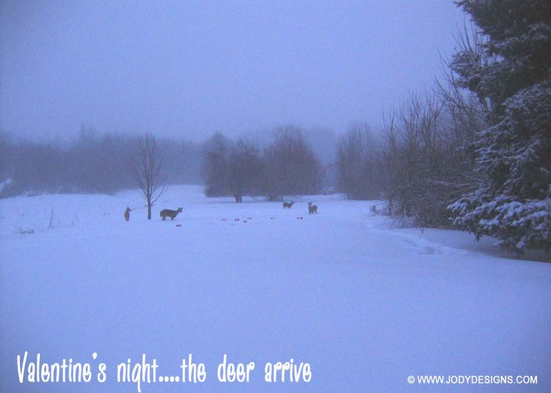 Blog-the deer arrive#1