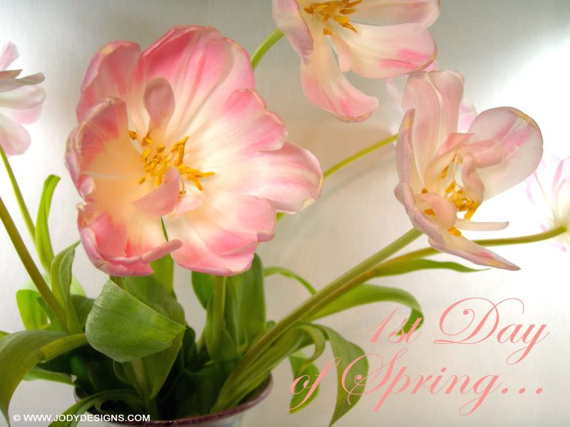 1st day of spring:blog
