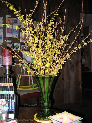 Blog: Forsythia