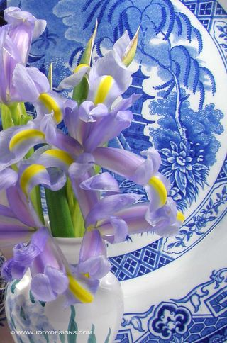 Blog-flowers & plate closeup